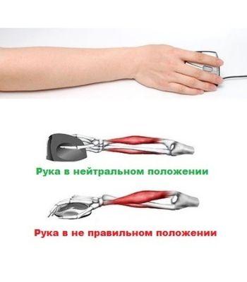 Положении руки при использовании вертикальной, эргономической мышки
